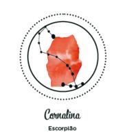 meu astral mostruário_ESCORPIAO – CORNALINA