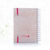 caderno petit leveme agenda ALMA-03